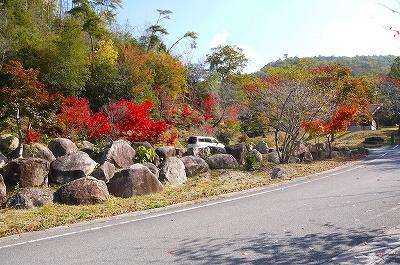 121103-shiki01-s.jpg